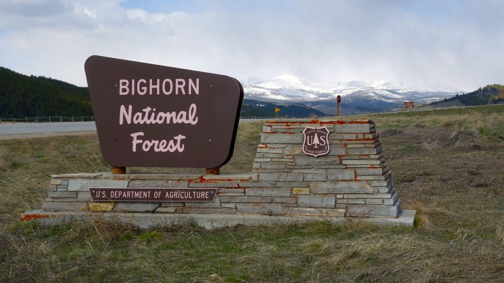bighorn national forest drive