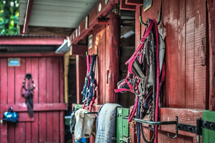 a stable with bridle hooks